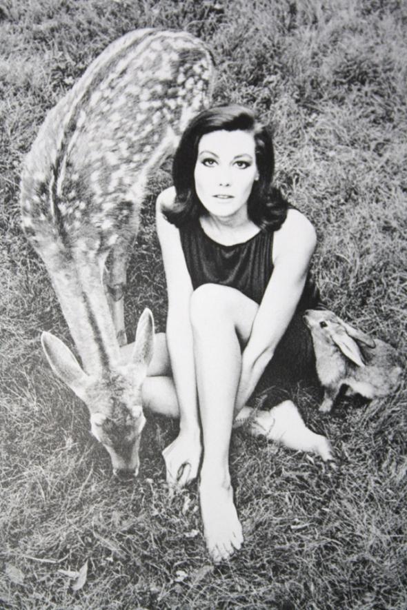 wintage-paine-mirror-of-venus-1966-15